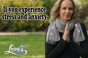 Post image for Find Harmony amidst Stress and Anxiety
