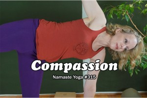 Post image for Namaste Yoga 315 Awakening Your True Self Series: Compassion
