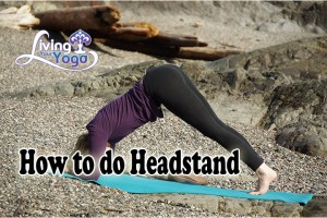 Post image for How to do Headstand