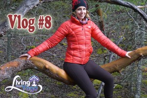 Post image for Double Hikes Photos Shoots and Whales : Vlog 8