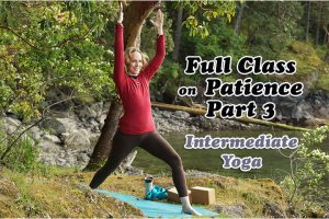 Post image for Namaste Yoga 329  Awakening to Your True Self Series, The Six Perfections: Patience Part 3