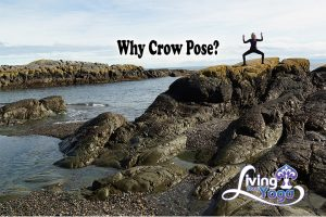 why crow pose