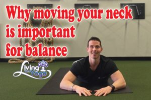 Post image for Why moving your neck is important for balance