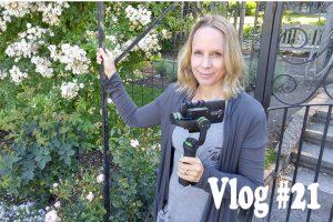 Post image for Milestones : Vlog21