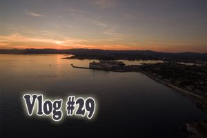 Post image for Visitors (humans and kittens) in Victoria – Vlog #29