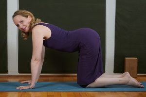 Post image for Yoga with Melissa 361 Moving At the Speed of Our Bodies: The Space between the Poses