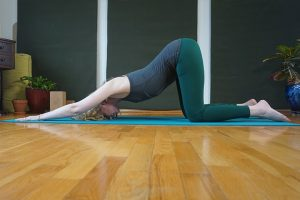 Post image for Yoga with Melissa 377 Heart Stabilization Series: Steady and Calm Attention