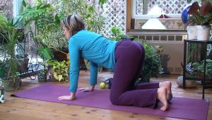 Post image for Yoga with Melissa 119 Lining Up Hips, Knees, Ankles and Feet
