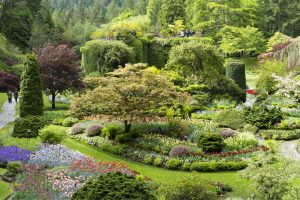 Post image for Butchart Gardens an honest review