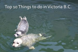 Post image for Top 10 Things to do in Victoria B.C.