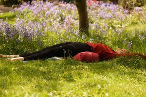 Post image for Restorative Yoga, Yin Yoga, and Buddhist Meditation