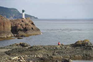 Post image for Pender Island Hiking Trails