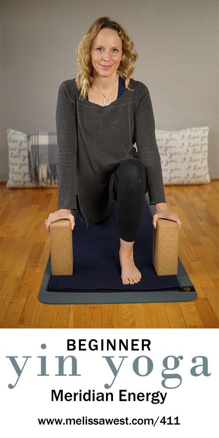 Beginner Yin Yoga 60 min | Meridian Energy | Yoga with Dr