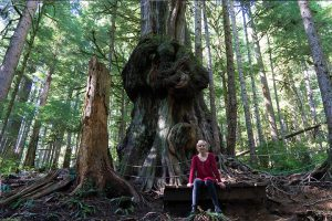 Post image for Day trip from Victoria BC on Vancouver Island: Pacific Marine Circle Route and Avatar Grove